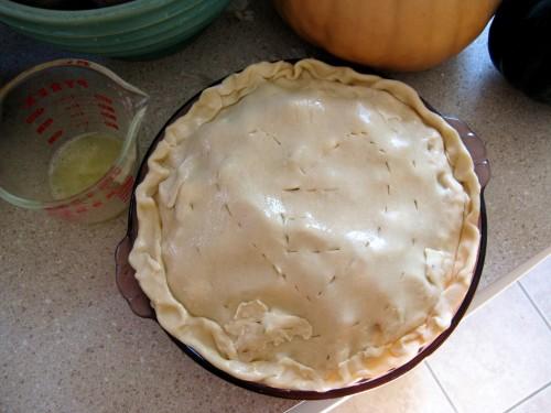 shiny pie