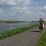 Kinderdijk bike rider
